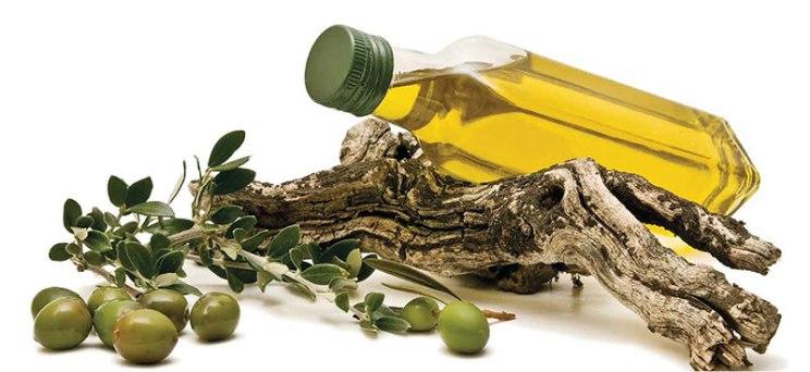 Alyvuogių aliejus Turkijoje