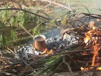 kava ant laužo