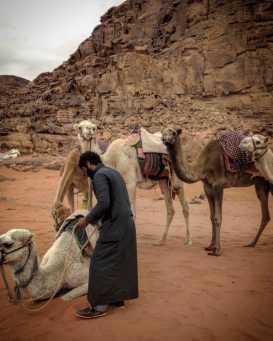 Wadi Rum kupranugariai